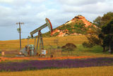 Picture relating to Mount Horner Oil Field - titled 'Mount Horner Oil Field'