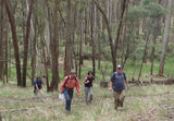 Picture relating to Ballarat-Creswick Regional Park - titled 'Ballarat Bushwalkers on Rogaine'