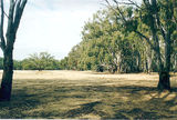 Picture relating to Cobram - titled 'Cobram State Forest - Tocumwal: Bourchiers Beach'