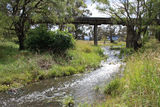 Picture of / about 'Deepwater River' New South Wales - Four Mile Creek near the confluence with Deepwater River