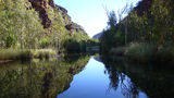 Picture relating to Pitta Creek - titled 'Pitta Creek'