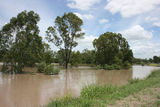Picture relating to Dawson River - titled 'Dawson River'