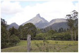 Picture relating to Mount Warning - titled 'Mount Warning - New South Wales'