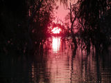 Picture relating to Lake Menindee - titled 'Lake Menindee,sunset.'