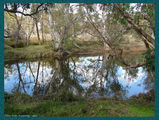 Picture relating to Chichester Range - titled 'Police Pools, Katanning WA'
