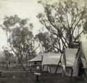 Picture relating to Dillalah - titled 'Campsite at the Governor's shooting camp, Dillalah, August 1907'