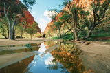 Picture of / about 'Ellery Creek' the Northern Territory - Ellery Creek