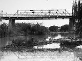 Picture relating to Molonglo River - titled 'Commonwealth Avenue Bridge over the Molonglo River'