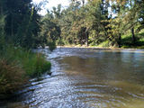 Picture of / about 'Abercrombie River' New South Wales - Tuena