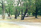 Picture relating to Stawell - titled 'Stawell: Federation Park Rest Area'