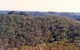 Picture relating to Hawkesbury River - titled 'Hawkesbury River hinterland'