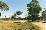 Picture of / about 'Gippsland Lakes Coastal Park' Victoria - Gippsland Lakes Coastal Park; Eal Farm bush camps
