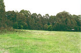 Picture relating to Toombullup - titled 'Toombullup State Forest: Stringybark Creek camp ground'