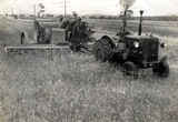 Picture relating to Round Hill - titled 'Round Hill - harvesting '