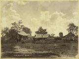 Picture relating to Nogoa - titled 'Echo Hills Station in the parish of Nogoa'