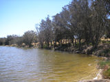 Picture relating to Chillinup Road - titled 'Pallinup River Bank'