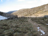 Picture of / about 'Thredbo Village' New South Wales - Walking track from Thredbo Village to Dead Horse Gap