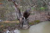 Picture relating to Mulligans Creek - titled 'Mulligans Creek'