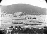 Picture relating to Ainslie - titled 'Braddon area from Mt Ainslie'