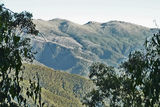 Picture of / about 'Mount Townsend' New South Wales - Mount Townsend