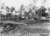 Picture relating to Cordalba - titled 'Workers gather for a meeting at Cordalba, Queensland, 1911'