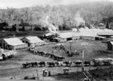 Picture relating to Canungra - titled 'Bullock teams at the sawmill in Canungra, Queensland, ca.1910'
