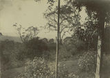 Picture relating to Toowoomba - titled 'Mountain views at Harlaxton,Toowoomba, ca. 1898'