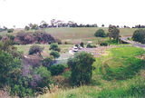 Picture of / about 'Werribee River' Victoria - Werribee River; Exford Park