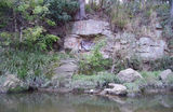 Picture of / about 'Kedron Brook' Queensland - Kedron Brook