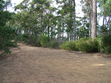 Picture relating to Mount Imlay - titled 'Mount Imlay picnic area carpark'