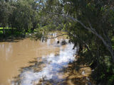 Picture of / about 'Lachlan River' New South Wales - Lachlan River at Forbes