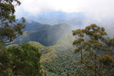 Picture of / about 'New England National Park' New South Wales - New England National Park