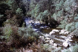 Picture relating to Kiewa River - titled 'Kiewa River'
