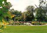 Picture relating to Kiaree - titled 'Kiaree Front Garden '