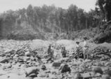 Picture relating to Bartle Frere - titled 'Sluicing for gold at the Bartle Frere township on the upper North Johnstone River'