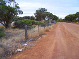 Picture of / about 'Rabbit Proof Fence Road' Western Australia - Rabbit Proof Fence Road