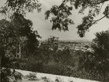 Picture relating to Paddington - titled 'View from the grounds of Government House, Paddington, 1932'