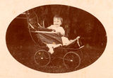 Picture of / about 'Saltbush Park' Queensland - Child sitting in a pram at Saltbush Park, near Mackay, 1900-1910