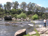 Picture of / about 'Mitchell River' Victoria - Mitchell River