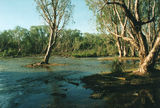 Picture of / about 'Roper River' the Northern Territory - Roper River