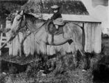 Picture relating to Urangan - titled 'Young Edna Christiansen on a horse at Urangan Farm, Queensland, 1910'