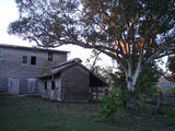 Picture of / about 'Mount Larcom' Queensland - Euora Homestead