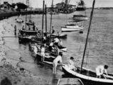 Picture relating to Hamilton - titled 'Sailing boats on the Hamilton foreshore, Brisbane, 1929'