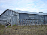 Picture of / about 'Kokotungo' Queensland - Kokotungo - old grain shed