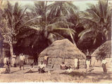 Picture relating to Thursday Island - titled 'Murray Island village  - Torres Strait Islands'