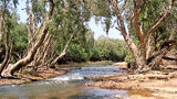 Picture relating to Katherine - titled 'Katherine River NT'