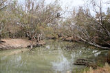 Picture of / about 'Lachlan River' New South Wales - Lachlan River