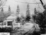 Picture relating to Bowen Hills - titled 'Aviary and Acclimatisation Gardens at Bowen Park, Brisbane, ca. 1889'