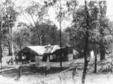 Picture relating to Queensland - titled 'Rough bush dwelling, ca. 1910'