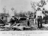 Picture of / about 'Kirrama' Queensland - Preparing kangaroo hides at Kirrama, Queensland, ca. 1920